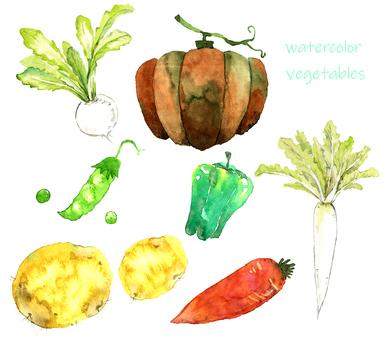 Vegetable watercolor painting