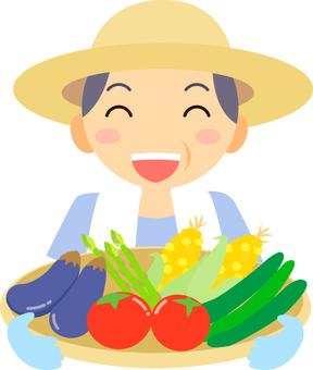 Summer / summer vegetables