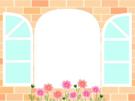 Fall window side frame Cosmos