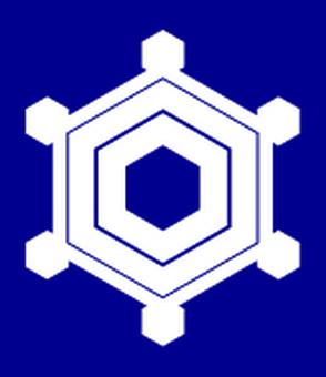 Snow crystal - 06