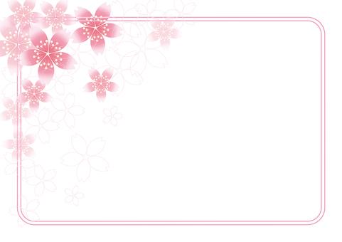 Sakura Sakura & Board 59