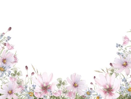 Flower frame 121 - Cosmos, flower frame of crackle