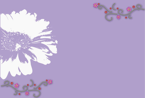 Gerbera Purple