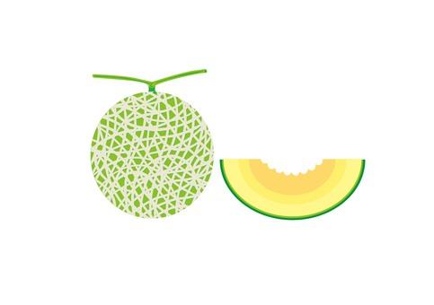 Melon 004