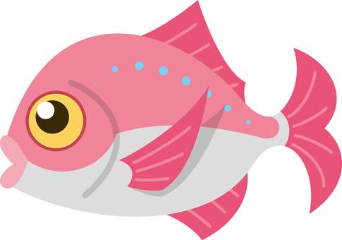 鯛 魚 キャラクター コミカル