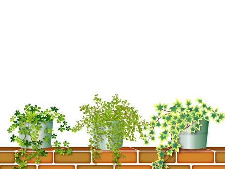 磚和植物框架