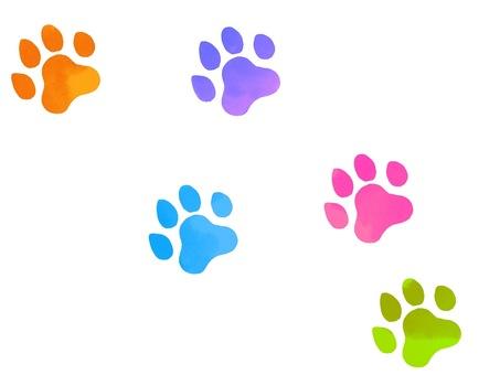 Illustration of footprints