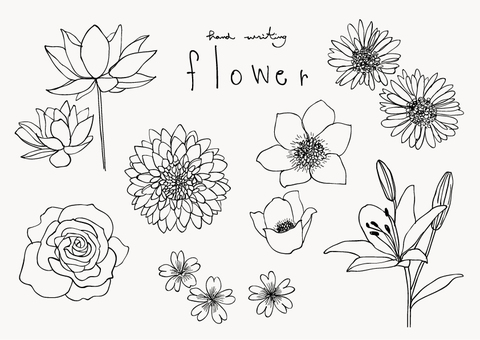 Flower / hand-drawn style