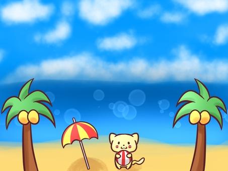 Cat and beach (blue sky, sea)
