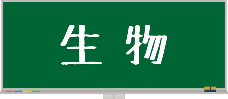 黑板課程科目11