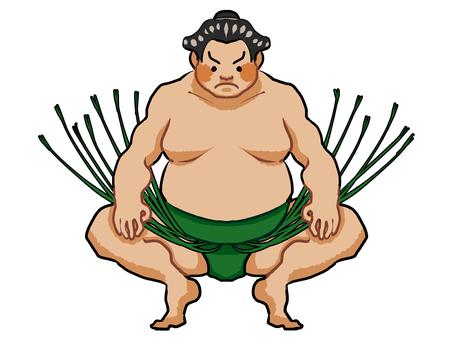 Sumo / sumo wrestler ①