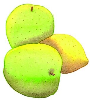 Green apple and lemon