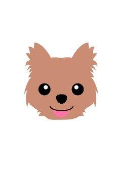 Dog 44