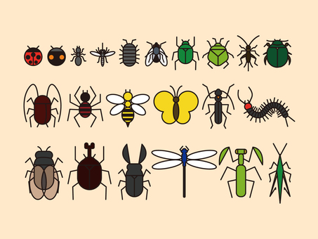 Insect icon color set