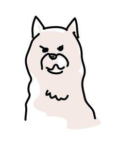 Dog 78