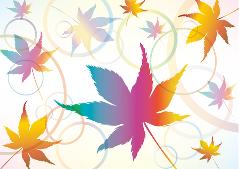 Maple autumn leaves maple