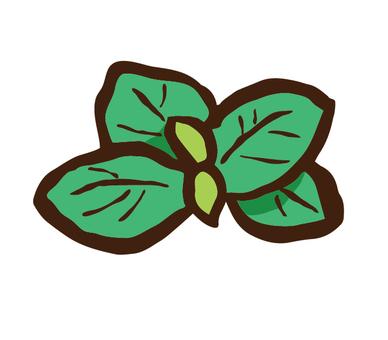 Mint leaves single