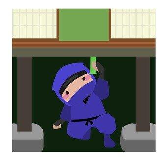 Hidden Ninja