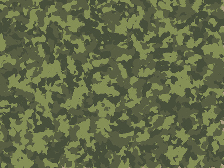 Camouflage type06
