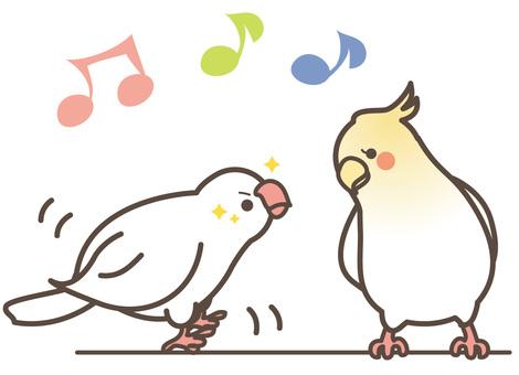 작은 새 02