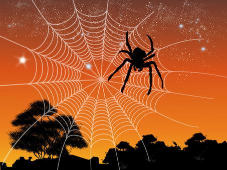 Spider's nest 02