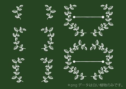 흰색으로 그린 작은 잎의 테두리