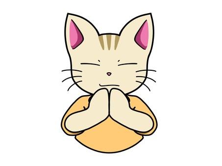 고양이 캐릭터 1_ 손을 맞추는 포즈