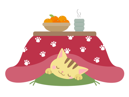 Cat sleeping on a kotatsu