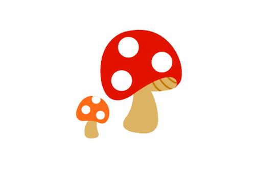 Autumn _ mushrooms