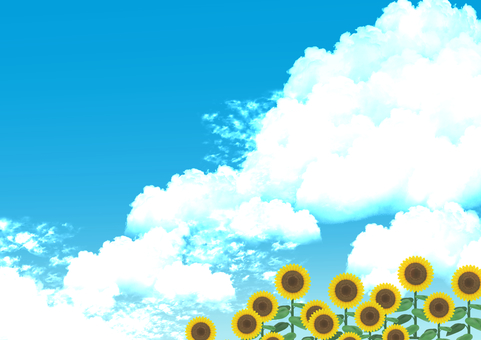 Clouds and sunflowers