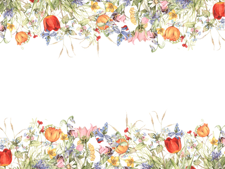 Flower frame 406 - Meadow flowers in spring