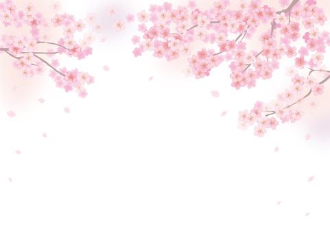 樱桃框架9