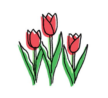 Three tulips (simple)