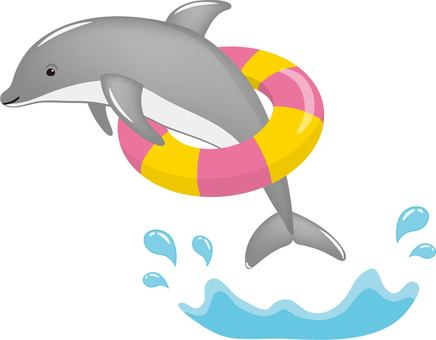 Dolphin Floating Ring Gray