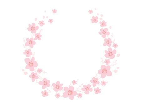 Frame _ Sakura _ 02