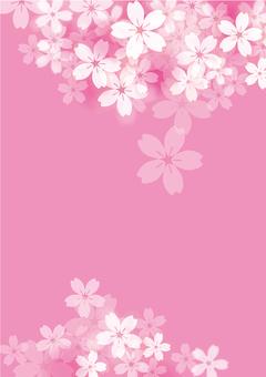 벚꽃 33