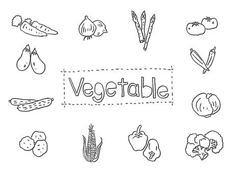 Handwritten vegetable illustration