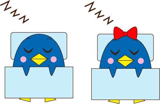 Sleeping penguin couple