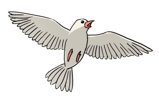 Flying bird (white)