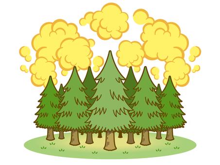 Cedar tree and pollen 01