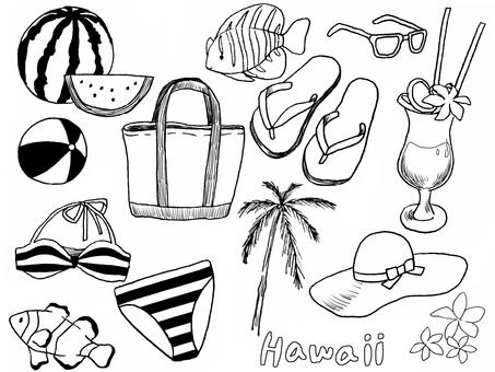 하와이와 비치