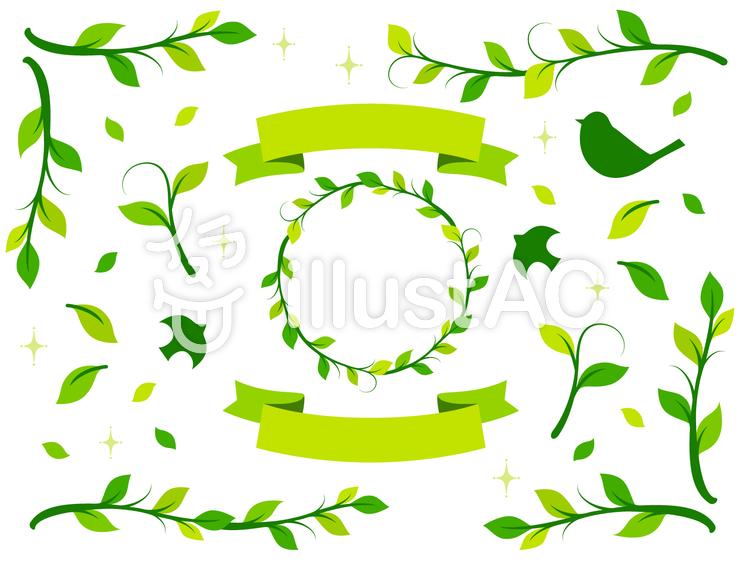 植物イラスト素材7イラスト No 461989無料イラストなら
