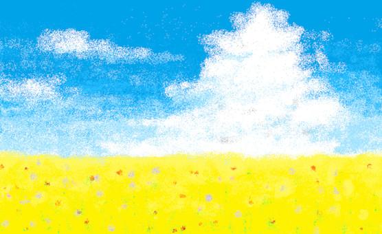 Summer sky and flower garden