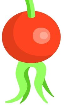Hermanus fruit