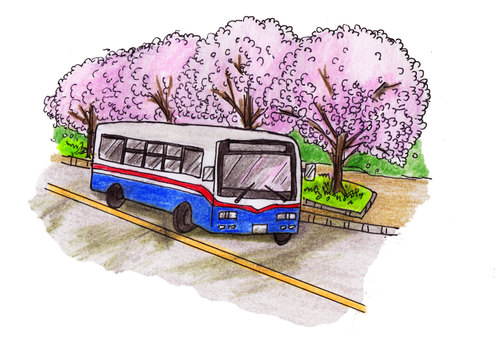Spring bus route