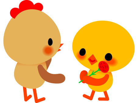 Chick and Carnation 2