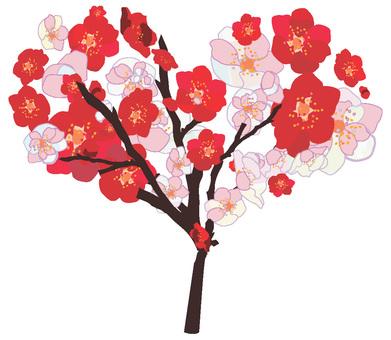 Plum flower heart tree