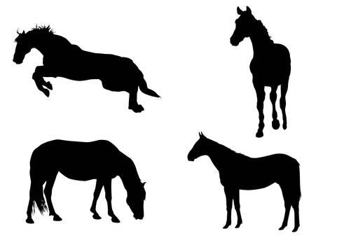 Horse · Silhouette