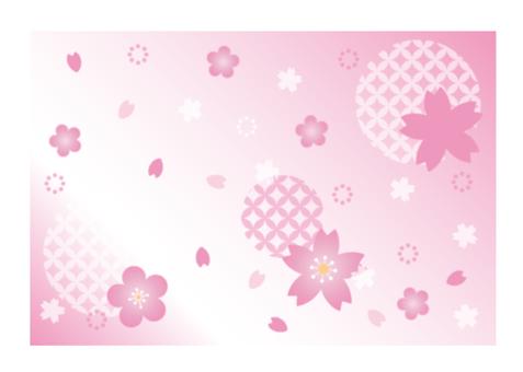 부드러운 벚꽃 2