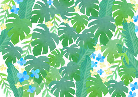 Background material 034 Monstera